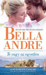 Bella Andre - Te vagy az egyetlen (új példány)