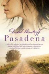 David Ebershoff-Pasadena (Új példány, megvásárolható, de nem kölcsönözhető!)